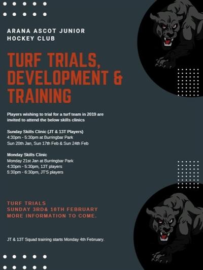 flyer for development